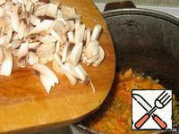Add the chopped сhampignons.