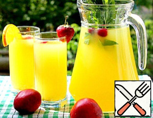Citrus Drink-Designer Recipe