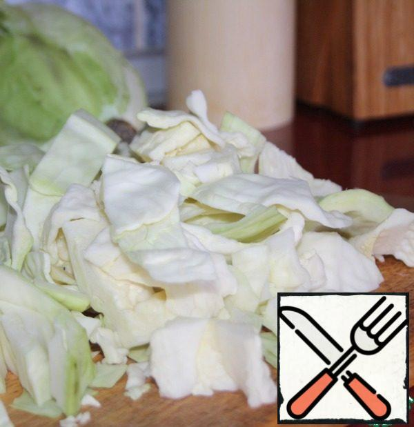 Cabbage cut into large.