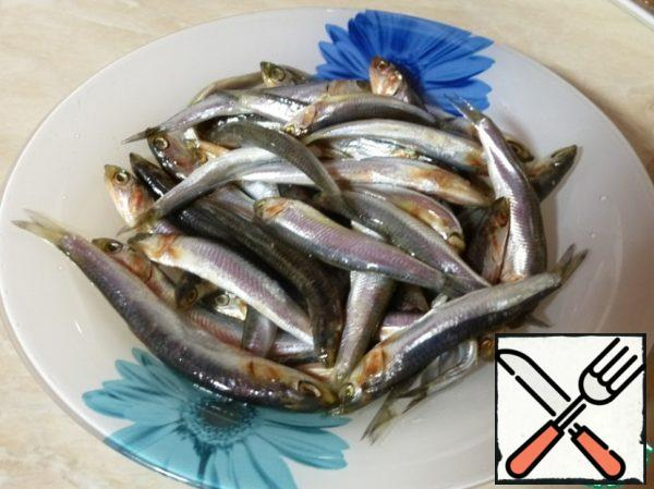 Fish, I have a Hamsa, to clean, to remove the head and backbone. On the Internet I read that the anchovy is anchovy. But since we in Novorossiysk anchovies salt I'm selling are not met, cost of the Hamsa. Hamsa is a very tasty fish, especially when it is properly salted.