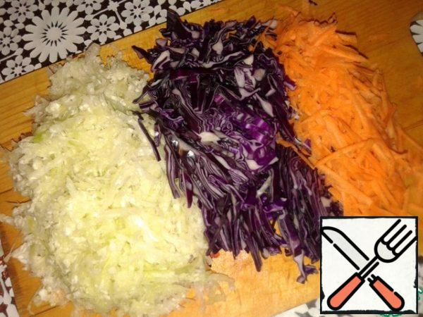 Radish and carrot three on a coarse grater, red cabbage cut.