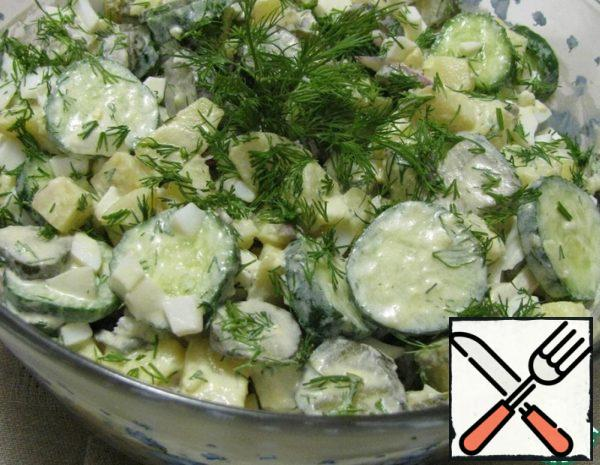 Salad pour the sauce and decorate with proteins and herbs.