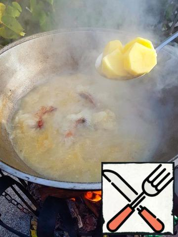 Pour boiling water (12L. cauldron came out about 4-5 liters of boiling water). You can use cold water with a strong fire it will rapidly boil. Salt. Remove the foam and cook the meat for about 1 - 1.5 hours. Remove the bulb with a slotted spoon. Add coarsely sliced potatoes. Cook until tender.