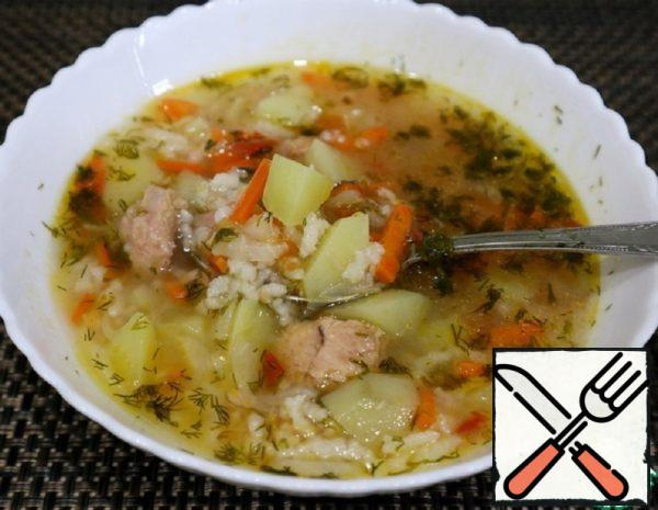 Tuna Soup in 30 Minutes Recipe
