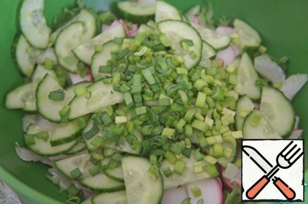 Cucumber.