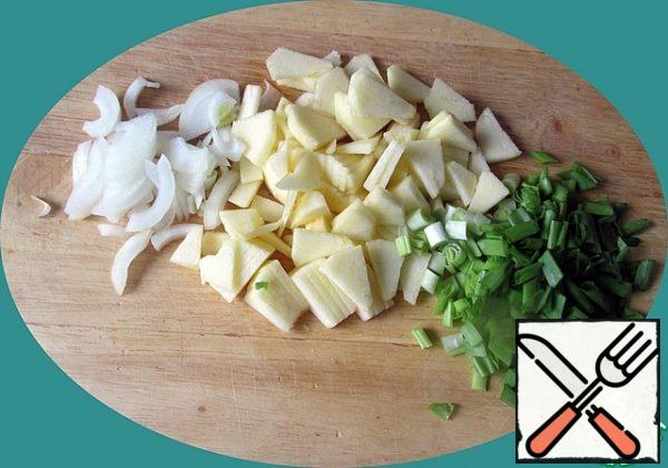 Onions cut into thin quarter rings, green onions-rings, peeled Apple-thin small slices.