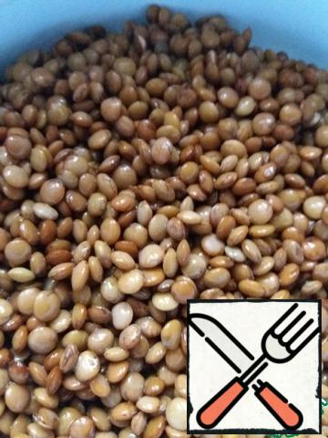 """In the evening, boil the rice. Lentils, washed several times, pour water and leave overnight. In the morning, drain the excess water and twist the swollen beans in a meat grinder along with rice, onions and garlic. Add salt and spices ( I have """"Italian herbs"""" and freshly ground pepper). In General, we cook like minced meat."""