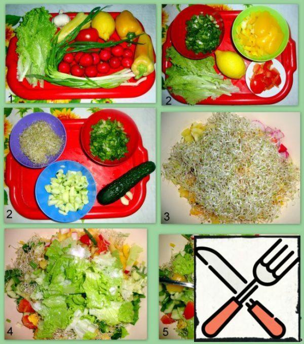 Cut all the vegetables. Add alfalfa. Season with salt, sunflower oil, and lemon juice.