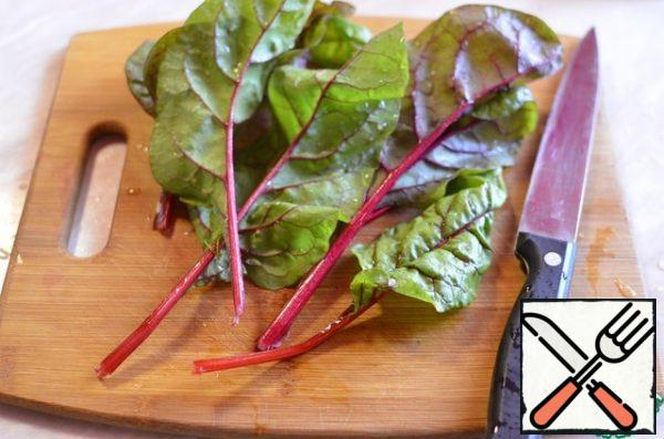 Cut leaf beet-Swiss chard.