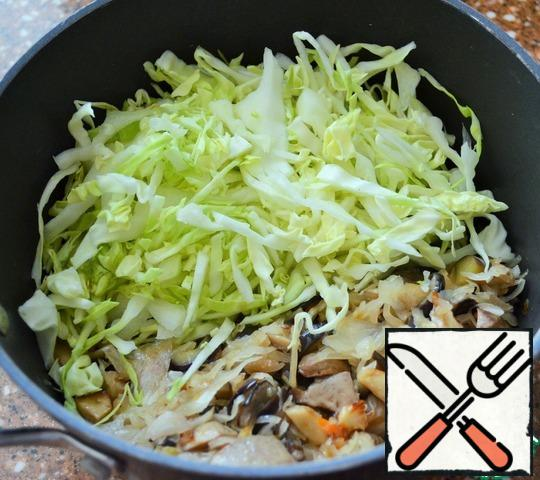 Add the shredded cabbage, stir, fry for another 5-7 minutes, add salt to taste.