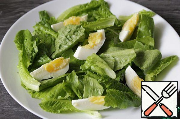 Spread the egg quarters on top of the salad.