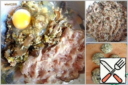 Combine minced meat, mushrooms, egg, garlic, salt. Stir. To form patties.