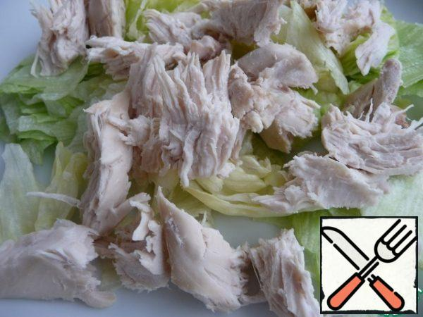 Cut pieces of chicken fillet onto a lettuce leaf.