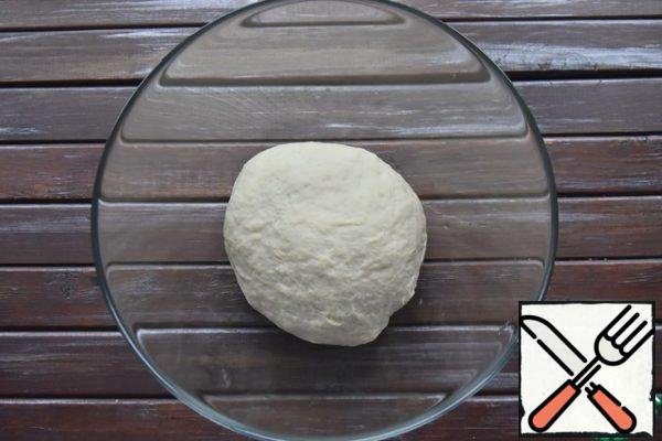 Knead dough. Put in a bowl, cover with cling film and leave in a warm place until increased in volume.