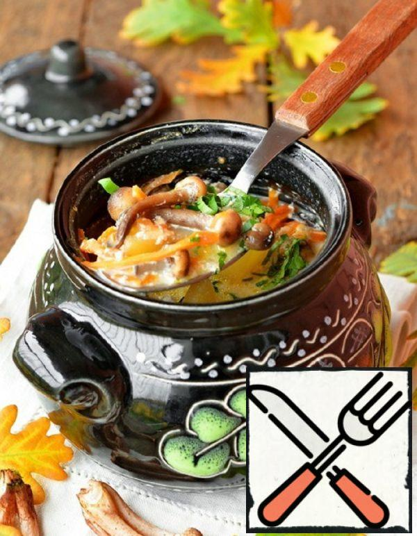 Mushroom Soup with Melted Milk Recipe