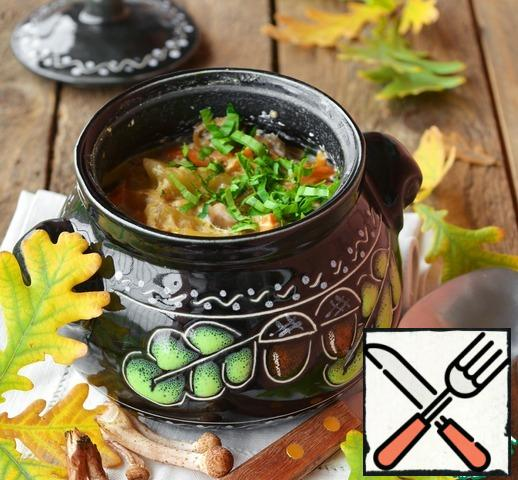 Cover the pots with lids and put them in a cold oven, turn on the temperature of 200°C and cook for about 30 minutes. Then reduce the temperature to 120-130°C and simmer the soup in pots for another 1 hour.When serving, sprinkle with herbs.