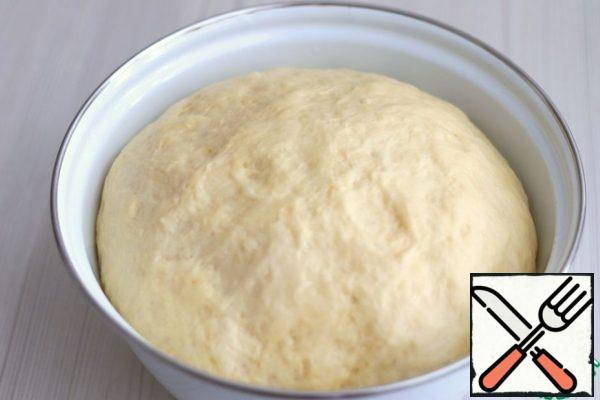 Cover the container with the dough with a towel or tighten with cling film and put it in a warm place for lifting. Then you can start cutting buns. Next, divide the dough into equal pieces of about 55-60 gr. Roll each piece into a round ball and cover with a towel to avoid drying out the dough.