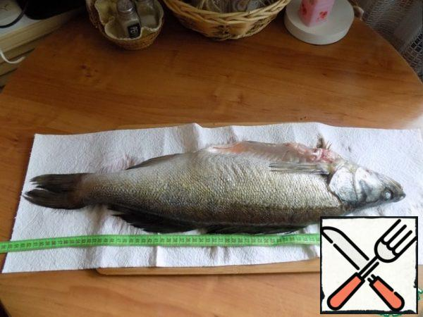 Zander fresh from the Oka at 2 kg and the size of 65 cm. Butchered a walleye. From 3 pieces of walleye weighing ~ 700 g, I made a fillet and I got 6 pieces of fillet for the main dish.