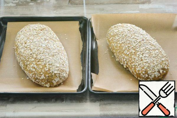CUTTING THE DOUGH AND BAKING. From this amount, two rather large loaves come out.To cut the dough, sprinkle the surface liberally with oat flakes, form loaves of any shape. Place them on a baking sheet covered with parchment. Leave to rise for 1 hour.