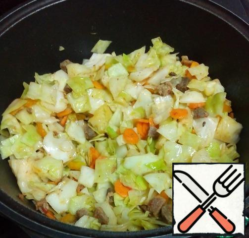 Add salt and pepper to taste, pour boiled water, cover again and continue stewing.